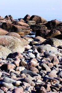Hamnskärin kivikkoista rantaa. (Kuva Mari Hirsikallio)